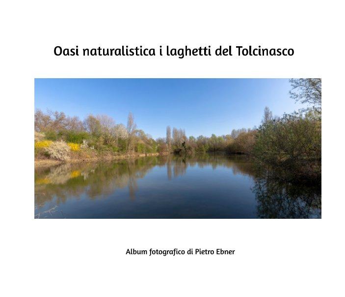 View Oasi naturalistica i laghetti di Tolcinasco by Pietro Ebner