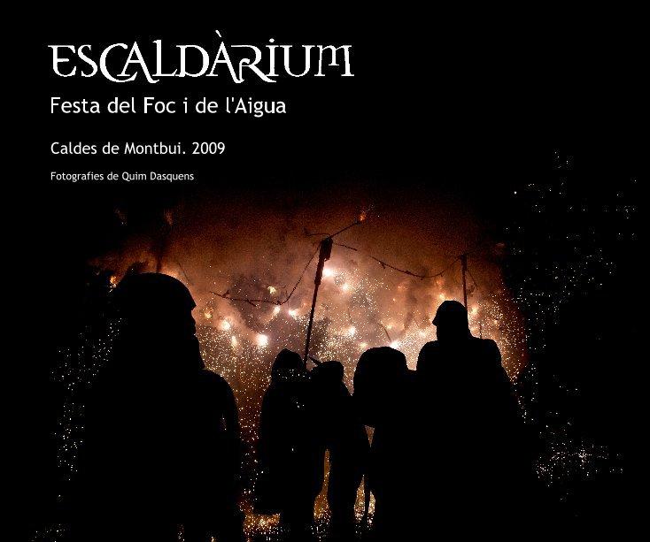View Festa del Foc i de l'Aigua by Fotografies de Quim Dasquens