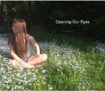 Opening Our Eyes book cover