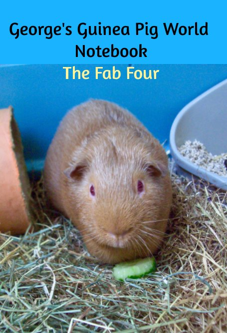 View George's Guinea Pig World Notebook by Jemima Pett