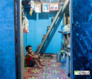 Les Enfants du Mékong Couleur 02 book cover