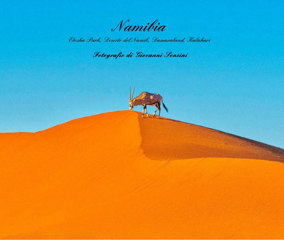 Bekijk Namibia Etosha Park, Deserto del Namib, Damaraland, Kalahari op Fotografie di Giovanni Sonsini
