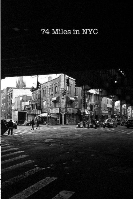 View 74 Miles in NYC by Matt Pittman