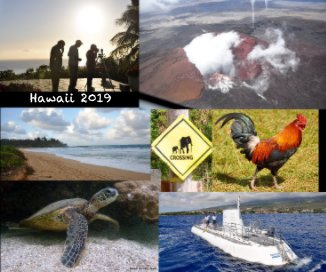 Hawaii 2019 book cover