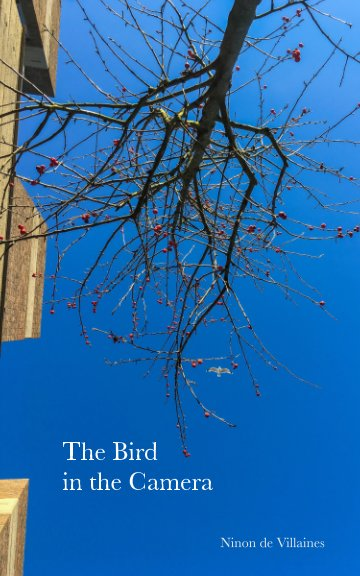 View The Bird in the Camera by Ninon de Villaines