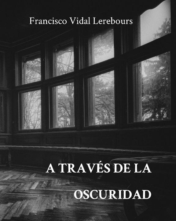 View A través de la oscuridad by Francisco Vidal Lerebours