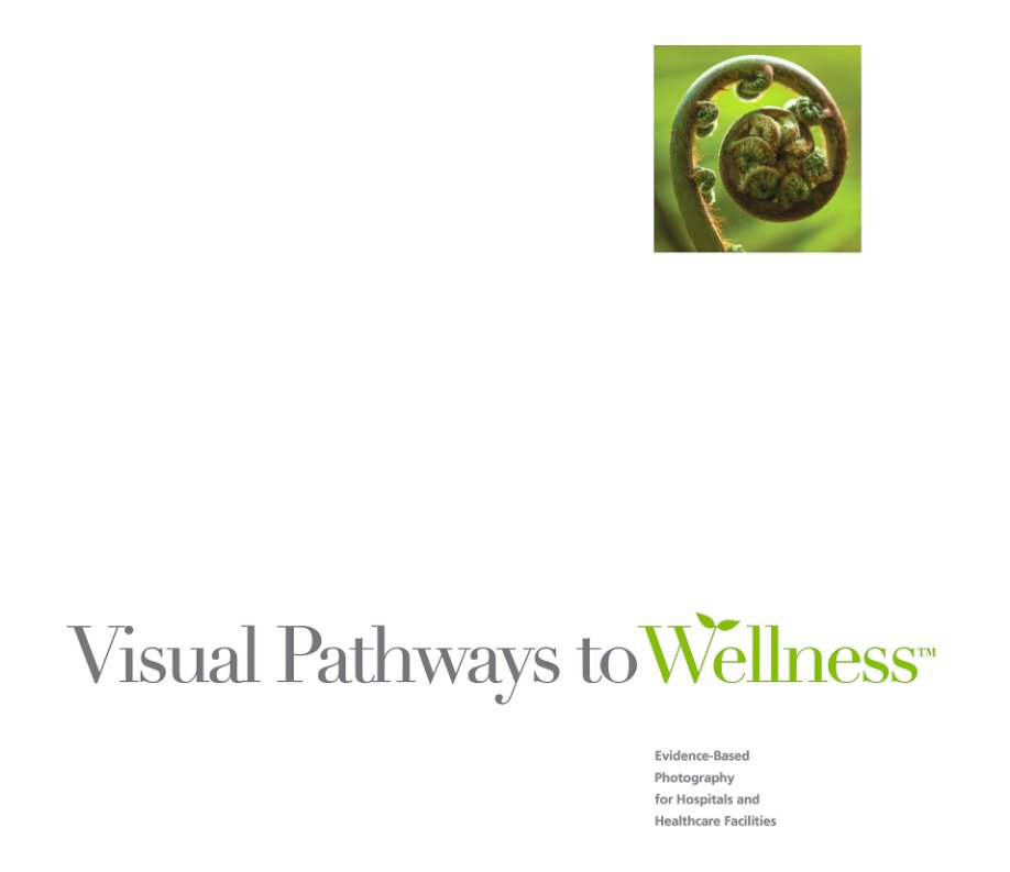 View Visual Pathways To Wellness™ by Mark Shoolery