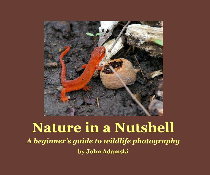 View Nature in a Nutshell by John Adamski