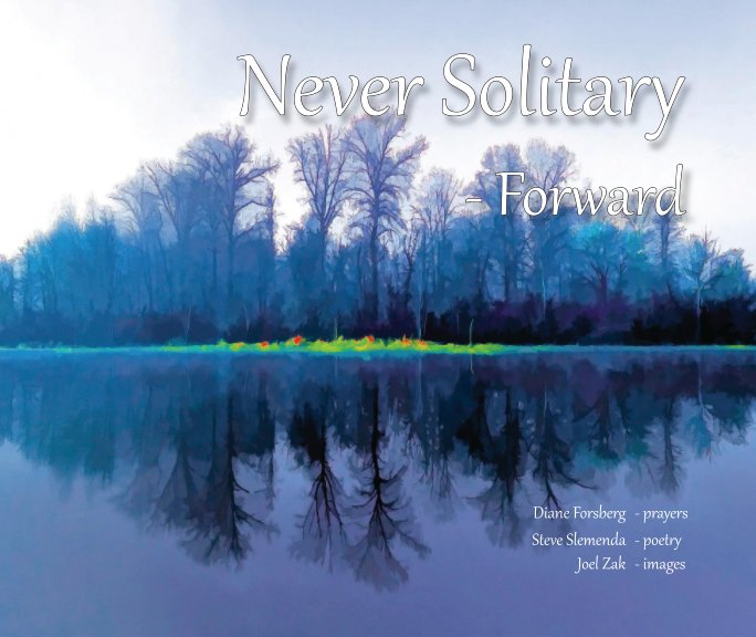 View Never Solitary Forward by Diane Forsberg