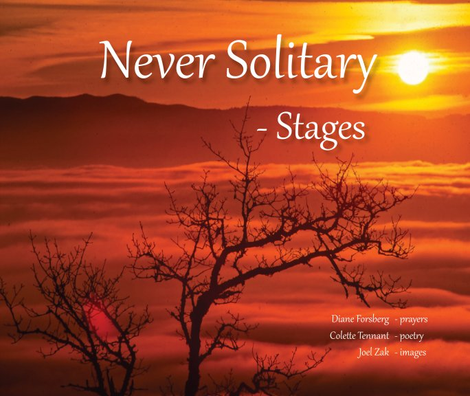 View Never Solitary -Stages by Diane Forsberg
