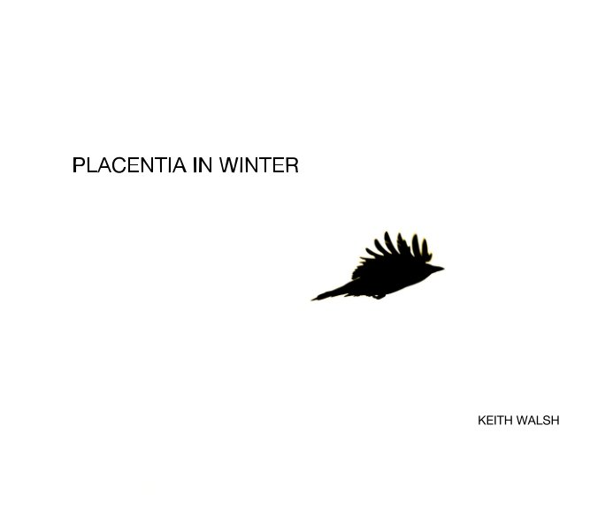 View Placentia In Winter by Keith Walsh