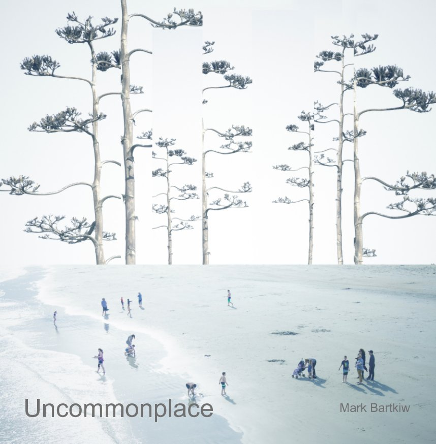 View Uncommonplace by Mark Bartkiw