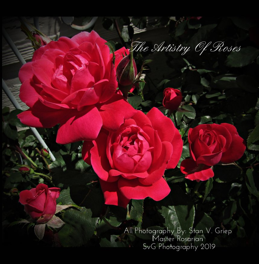 View The Artistry Of Roses by Stan V Griep