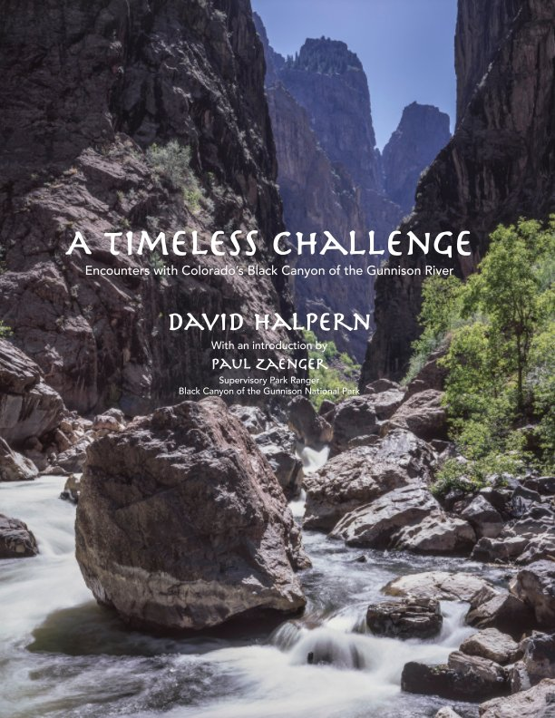 A Timeless Challenge-Revised Edition nach David Halpern anzeigen