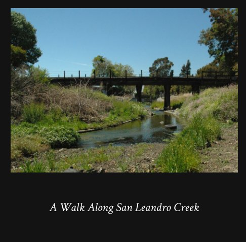 View A Walk Along San Leandro Creek by Robin Freeman, Honomi Ijima