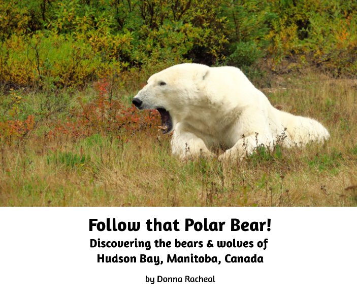 View Follow that Polar Bear! by Donna Racheal