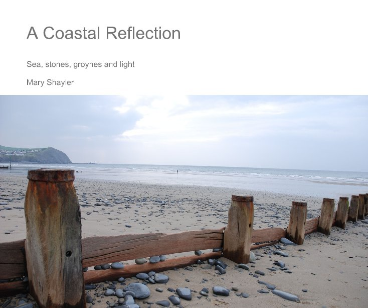 View A Coastal Reflection by Mary Shayler
