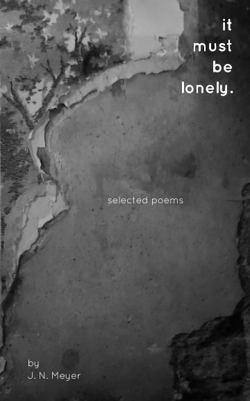 View It Must Be Lonely by J. N. Meyer