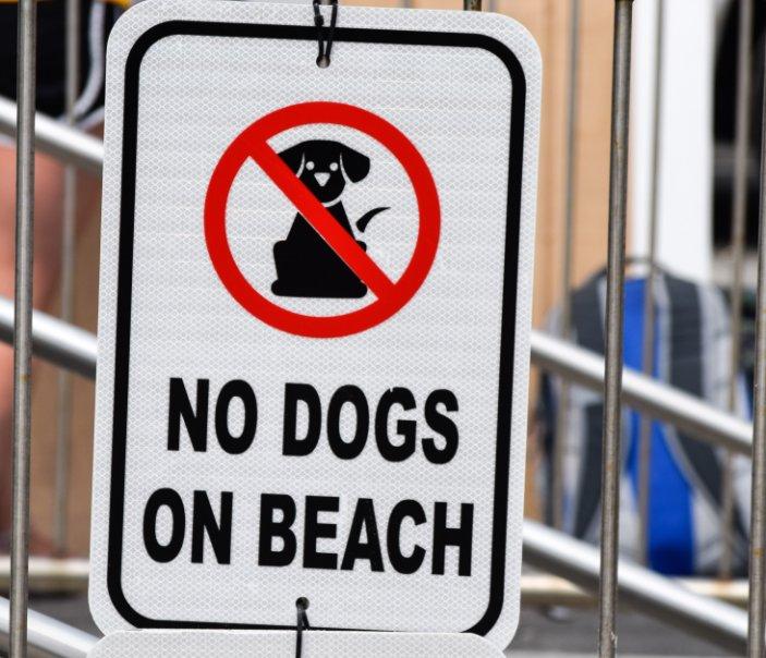 Ver No Dogs On Beach (hardcover) por julia smith