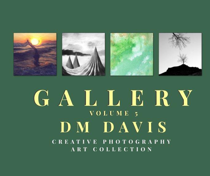 Ver Gallery Volume 5 por DM Davis
