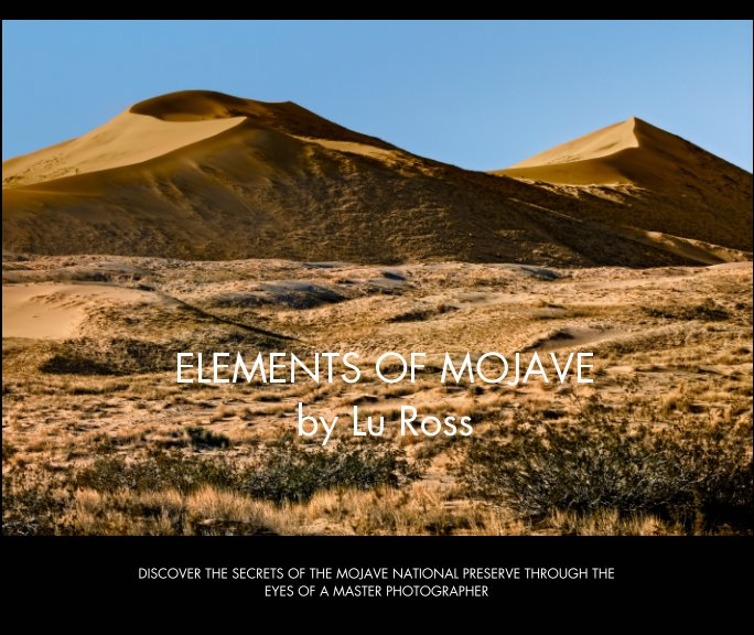 View Elements of Mojave by Lu Ross