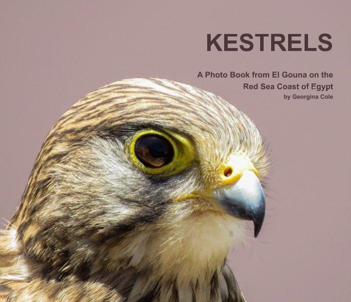 View Kestrels by Georgina Cole