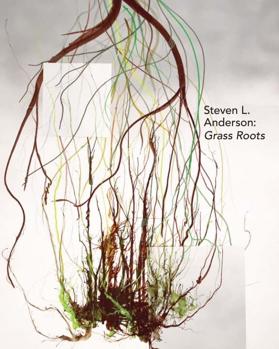 View Steven L. Anderson: Grass Roots by Steven L. Anderson