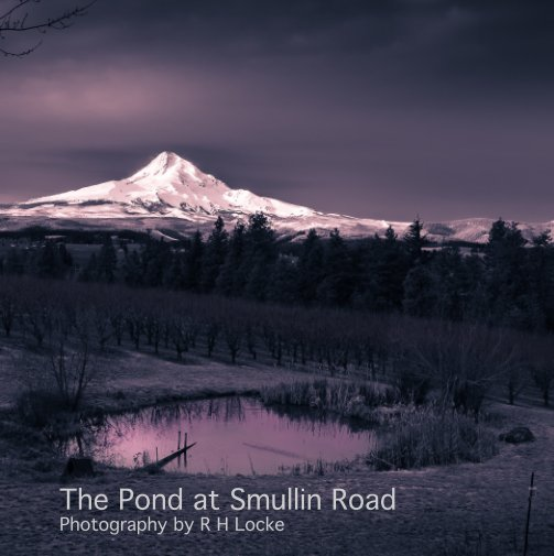 View The Pond on Smullin Road by Robin H. Locke