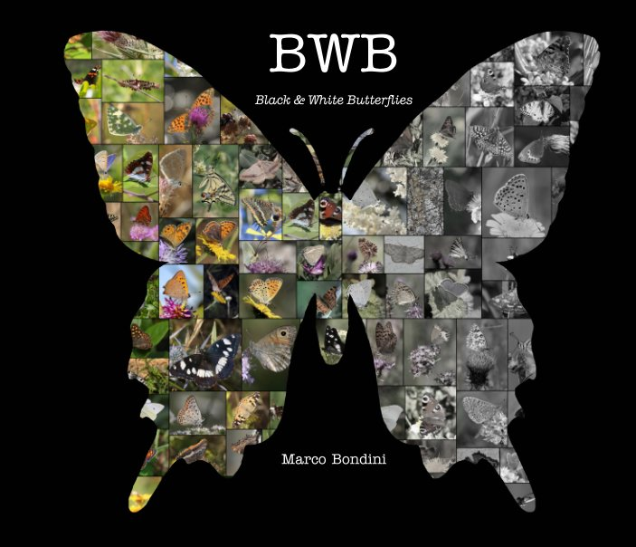Ver BwB por Marco Bondini