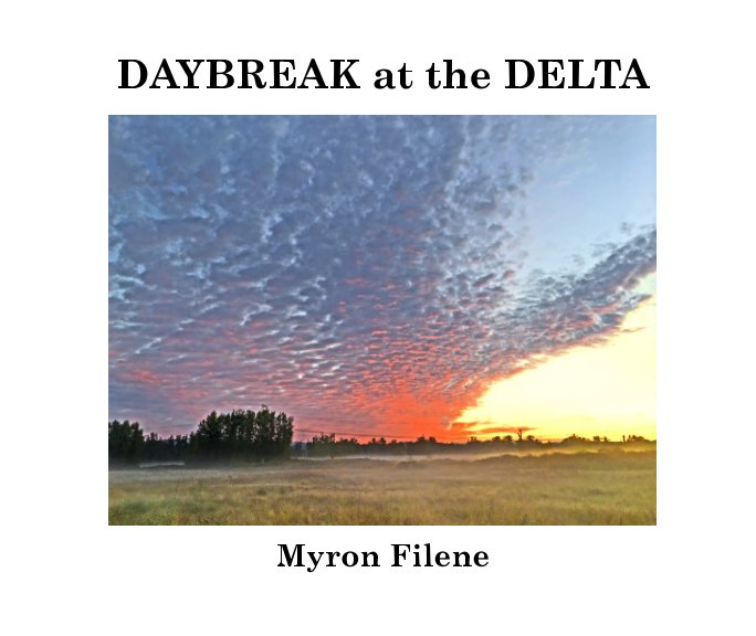 View Daybreak at the Delta by Myron Filene
