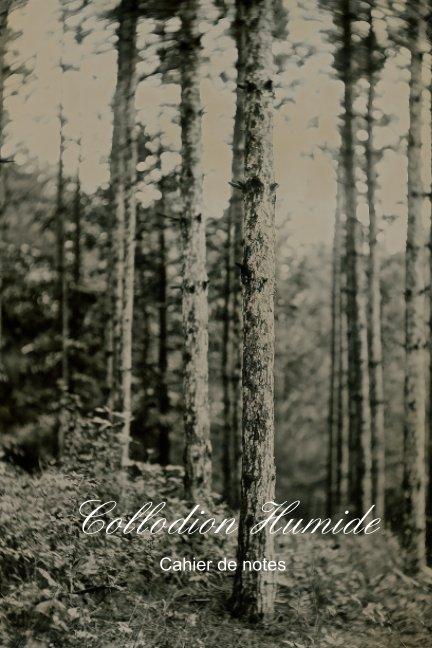 Ver Collodion Humide por Marcelo Troche