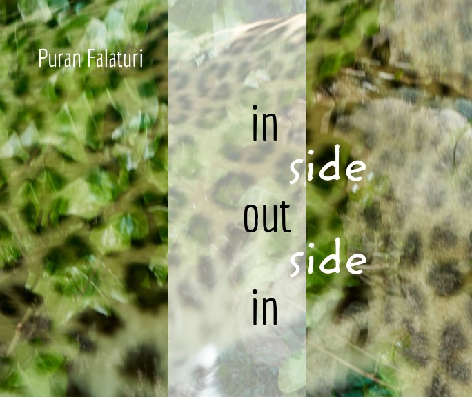 View inside out - outside in by Puran Falaturi