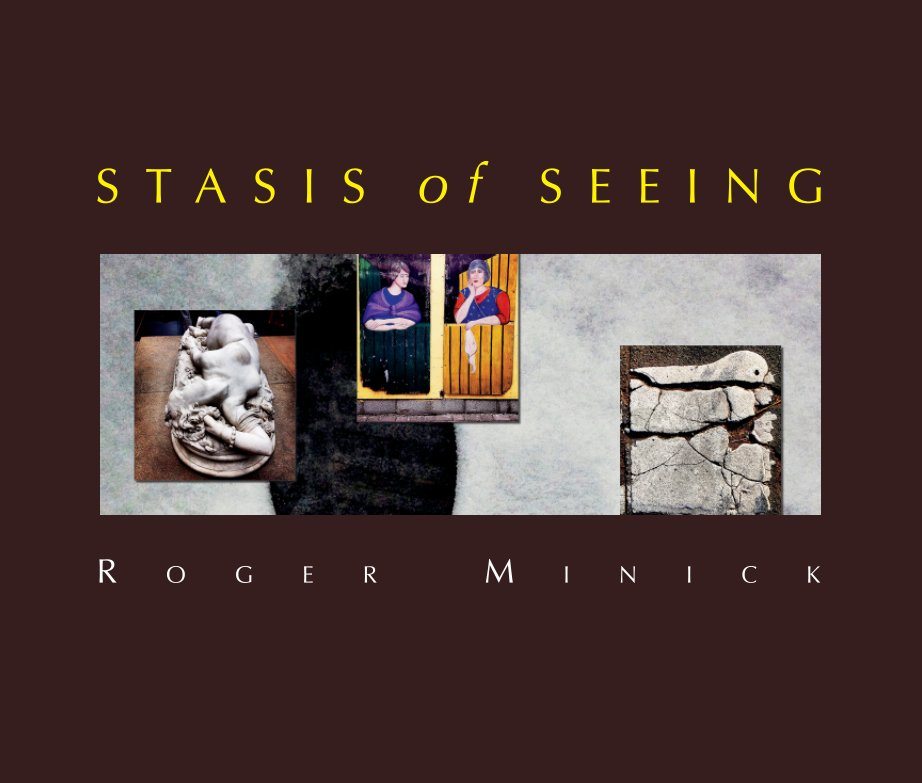 View Stasis of Seeing by Roger Minick