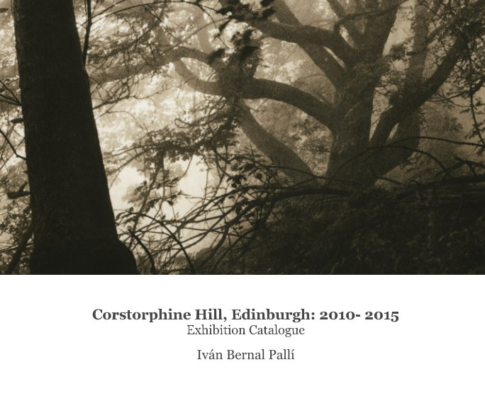 View Corstorphine Hill, Edinburgh: 2010- 2015 by Ivan Bernal Palli