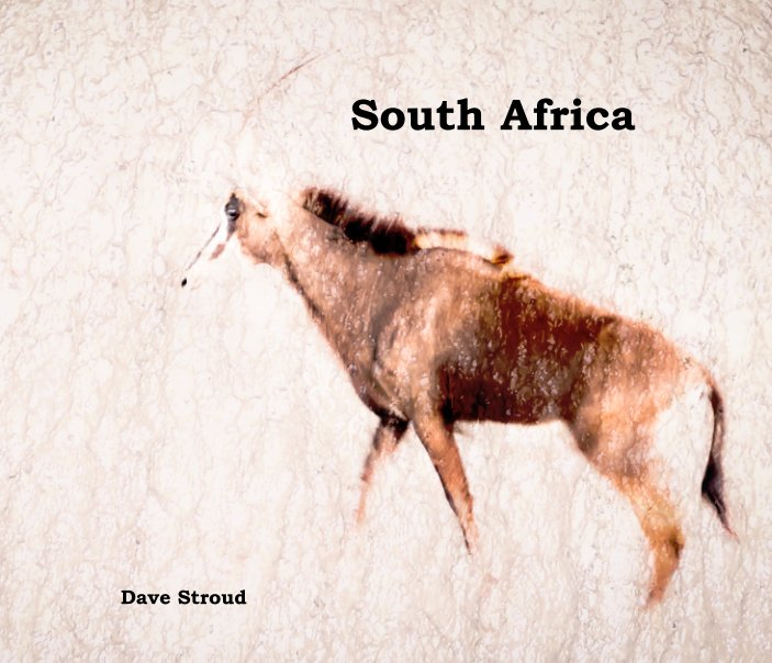 View South Africa by Dave Stroud