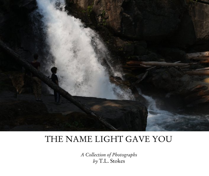 View The Name Light Gave You by T L Stokes