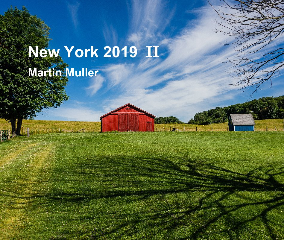 View New York 2019 II by Martin Muller
