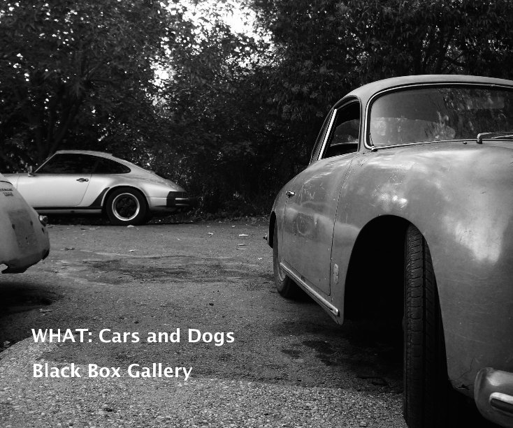 View WHAT: Cars and Dogs by Black Box Gallery
