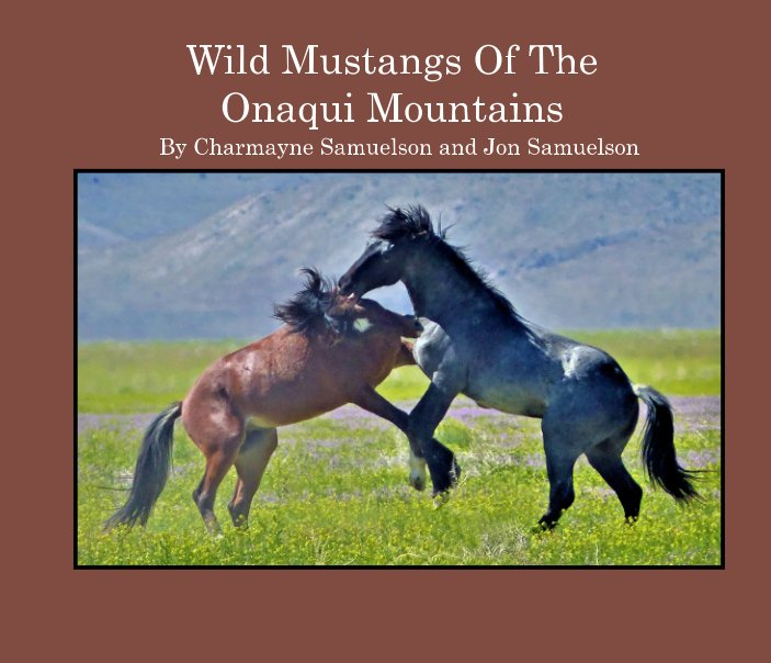 Wild Mustangs of the Onaqui Mountains nach Charmayne and Jon Samuelson anzeigen