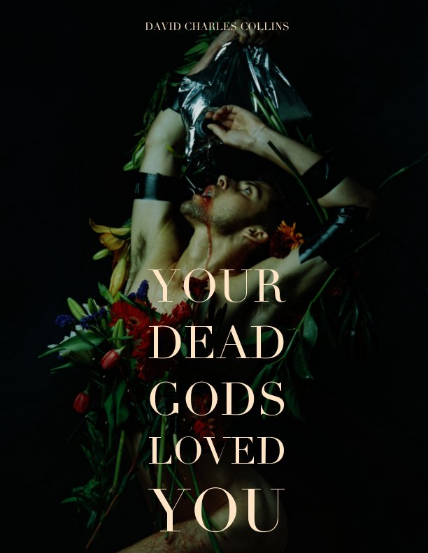 View Your Dead Gods Loved You (Catalogue) by David Charles Collins