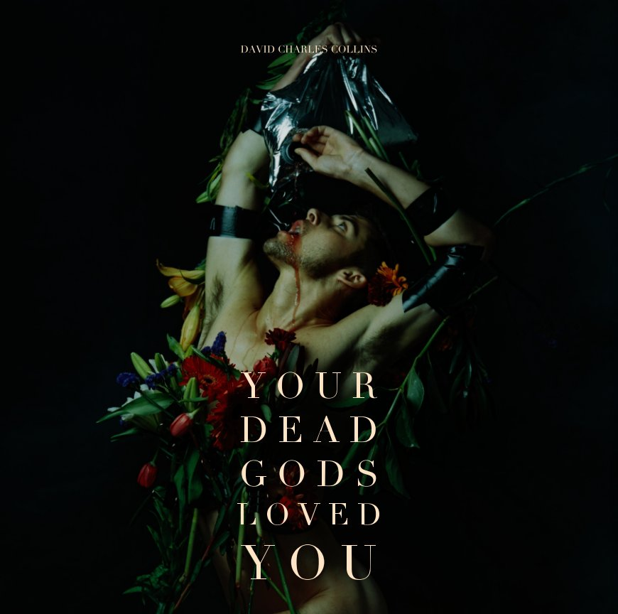 View Your Dead Gods Loved You by David Charles Collins