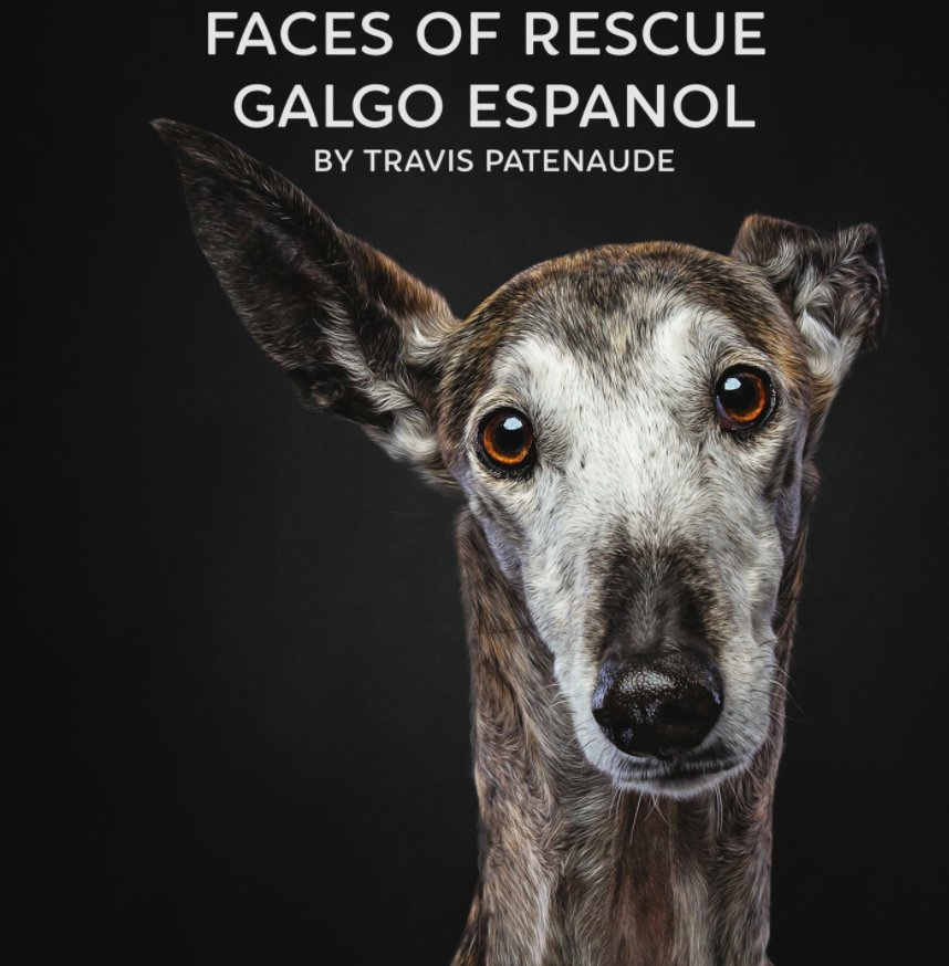 View Faces of Rescue by Travis Patenaude