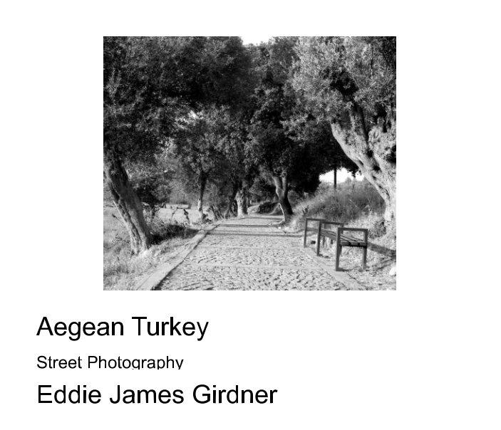 View Aegean Turkey by Eddie James Girdner