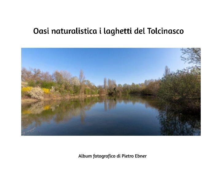 Visualizza Oasi naturalistica i laghetti di Tolcinasco di Pietro Ebner