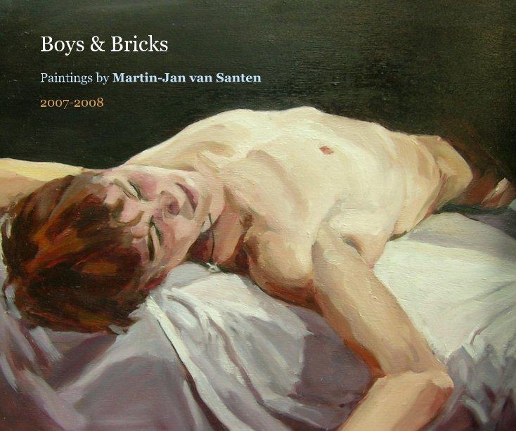 Bekijk Boys & Bricks op 2007-2008