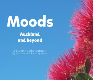Moods - Auckland and Beyond book cover