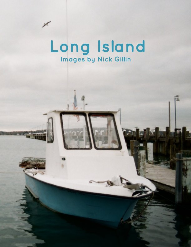 View Long Island by Nick Gillin
