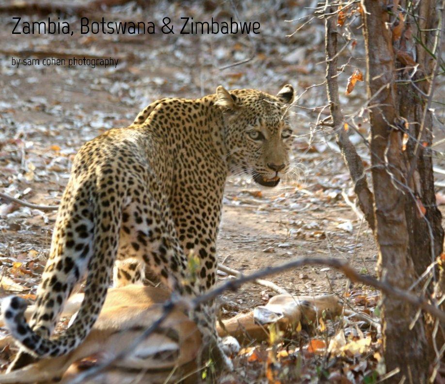 View Zambia, Botswana  and  Zimbabwe by sam cohen photography