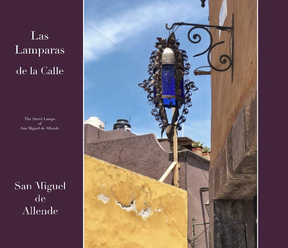 View Las Lamparas de la Calle - San Miguel de Allende by Steve Garfinkel