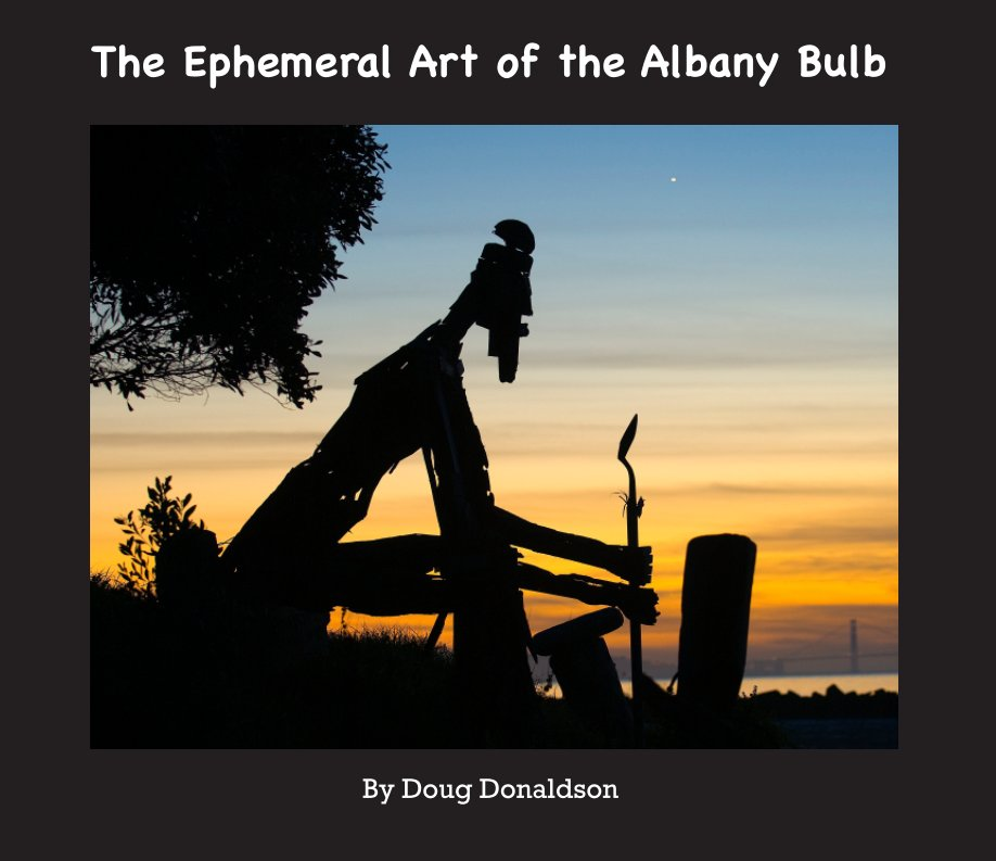 View The Ephemeral Art of the Albany Bulb by Doug Donaldson